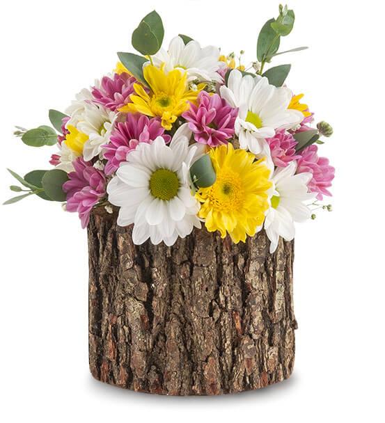 kütük+kır çiçeği