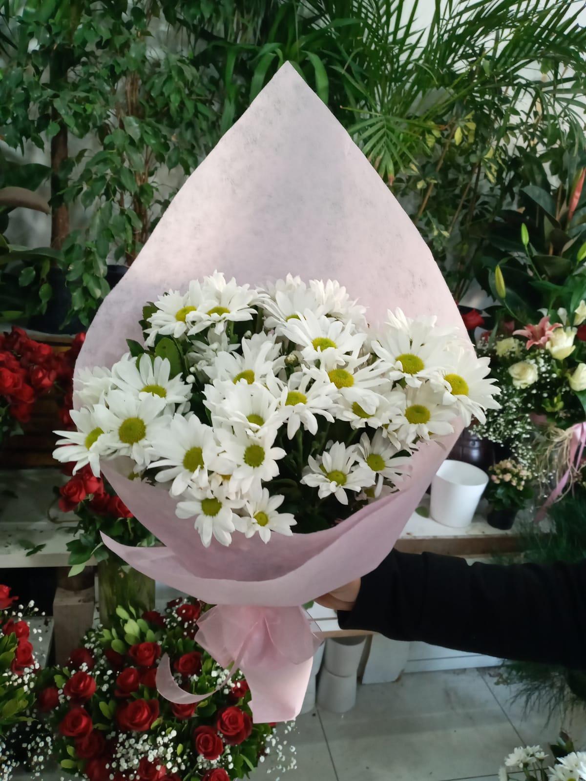 papatya demet çiçek