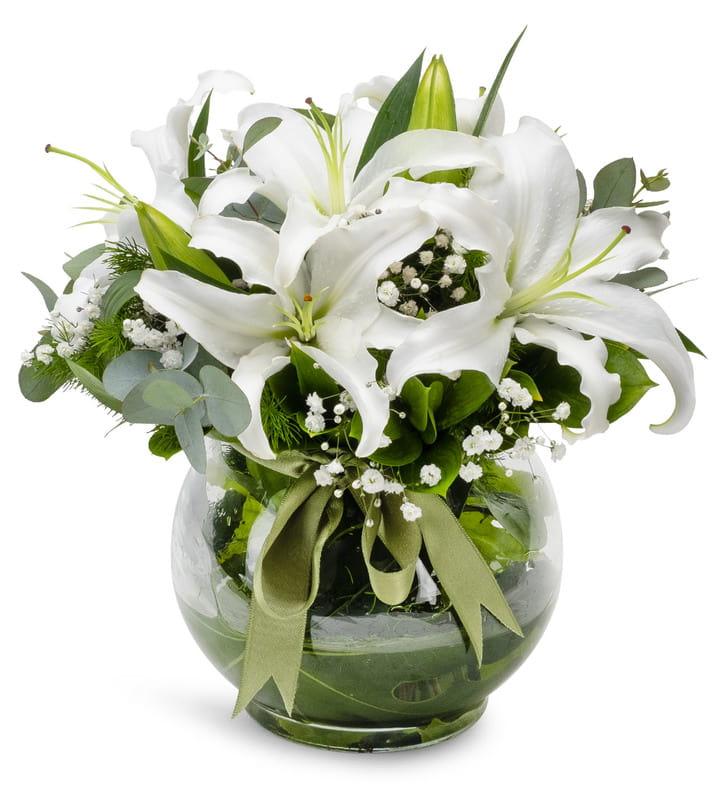 zarif lilyumlar